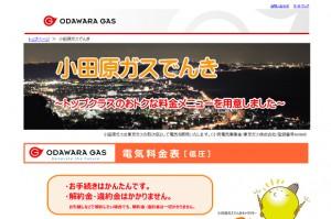 小田原ガスでんき