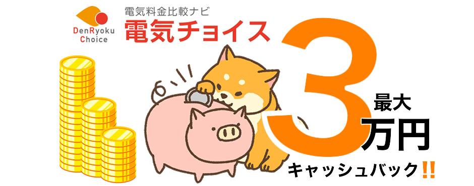 最大3万円キャッシュバック