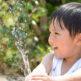 手軽に水道代の節約ができる「元栓」の調節方法!節水で安くする